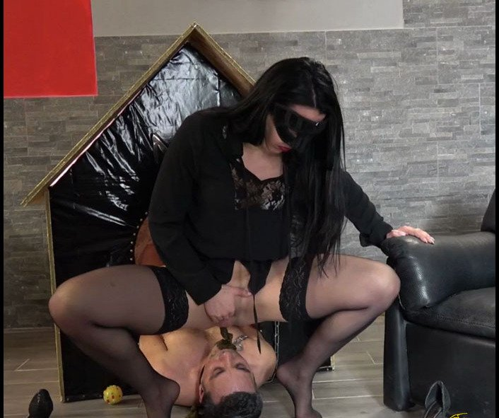 MISTRESS GAIA - SCAT IN HIS DOGHOUSEHD version [HD 720p]