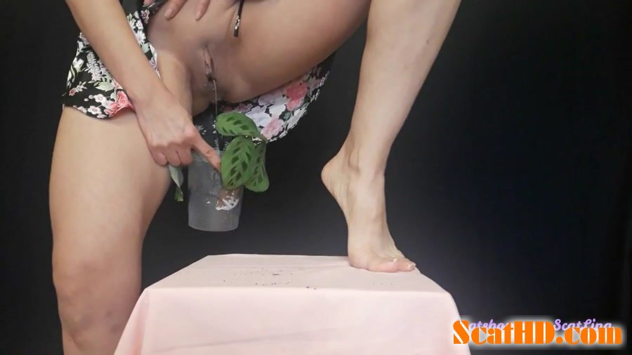 Big pile, New scat, Scatting Girl, Shitting Ass - I plant a flower and fertilize it [FullHD 1080p]
